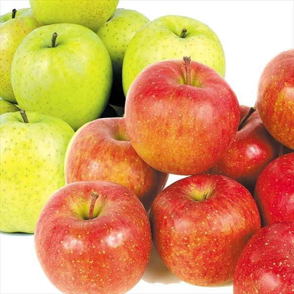 りんご 青森産 サンふじ&王林セット 2種4kg(各2kg)1組 ご家庭用 送料無料 食品