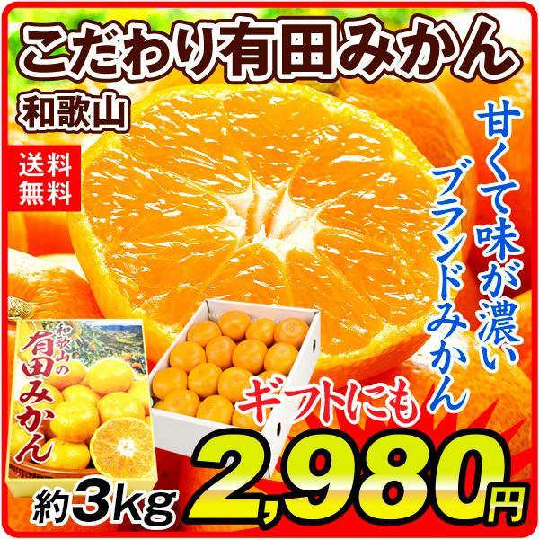 みかん 和歌山産 こだわり有田みかん 約3kg 1箱 送料無料 ギフト ブランド 白箱入り 蜜柑 食品 国華園