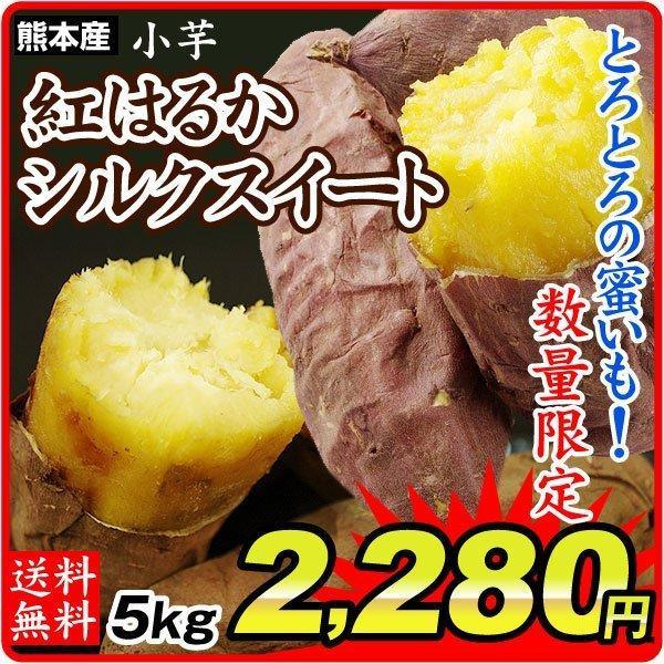 さつまいも 熊本産 紅はるか 又は シルクスイート 小芋 5kg  訳あり ご家庭用 甘藷 サツマイモ 野菜 数量限定 国華園
