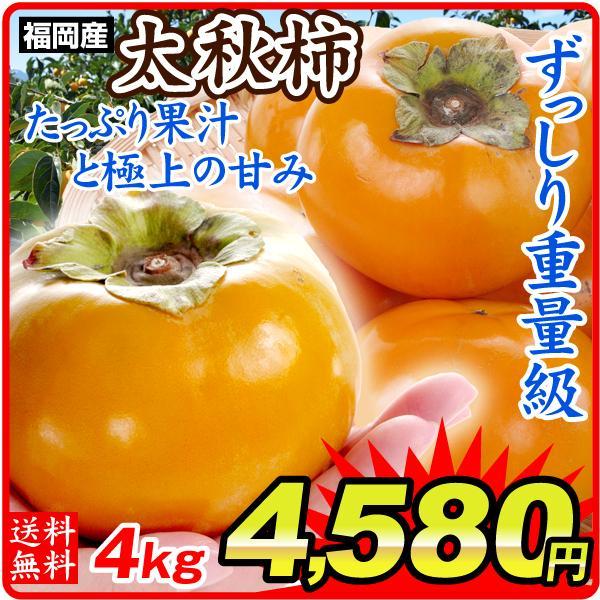 柿  福岡産 太秋柿 約4kg 1箱 送料無料 ご家庭用  甘柿 国華園