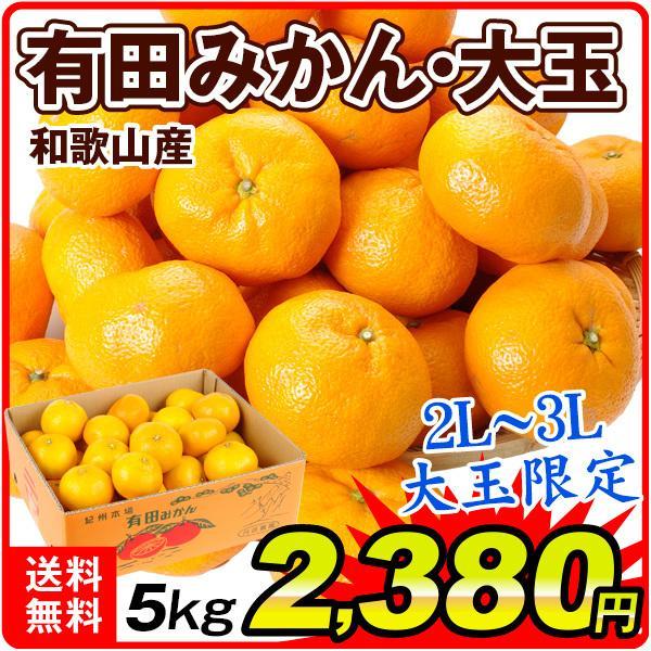 柑橘 和歌山産 有田の大玉みかん 5kg 送料無料 食品