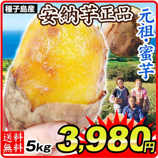さつまいも 種子島産 安納芋 5kg 送料無料 食品