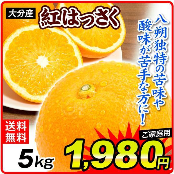 柑橘 大分産 ご家庭用 紅はっさく 5kg 送料無料 食品