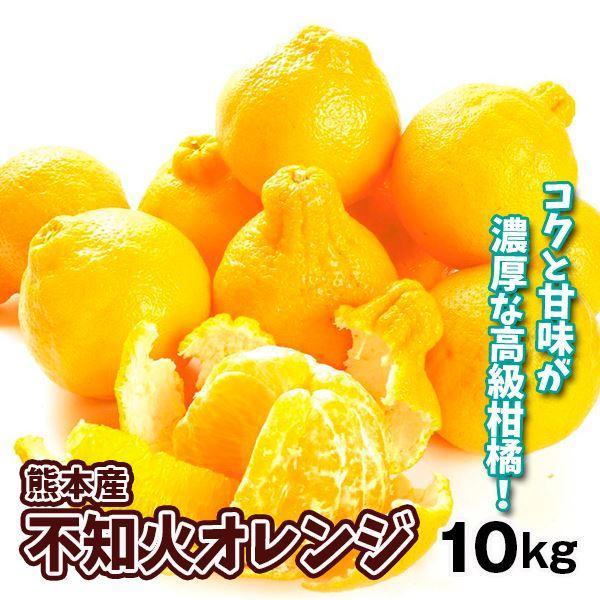 みかん 熊本産 不知火オレンジ(10kg)ご家庭用 無選別 デコポンと同品種 しらぬい デコみかん 蜜柑 柑橘 フルーツ 果物 食品 国華園|kokkaen
