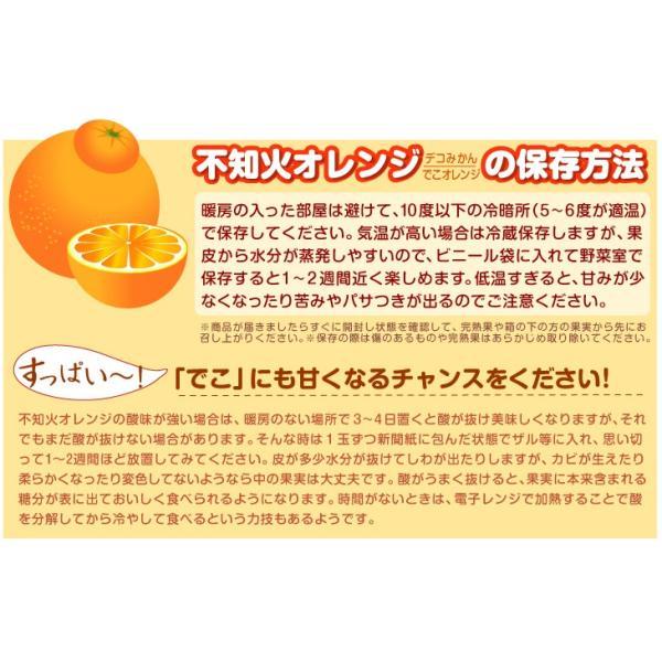 みかん 熊本産 不知火オレンジ(10kg)ご家庭用 無選別 デコポンと同品種 しらぬい デコみかん 蜜柑 柑橘 フルーツ 果物 食品 国華園|kokkaen|10