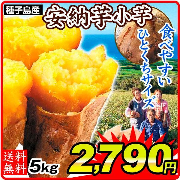 さつまいも 種子島産 安納芋【小芋】 5kg ご家庭用 送料無料 食品