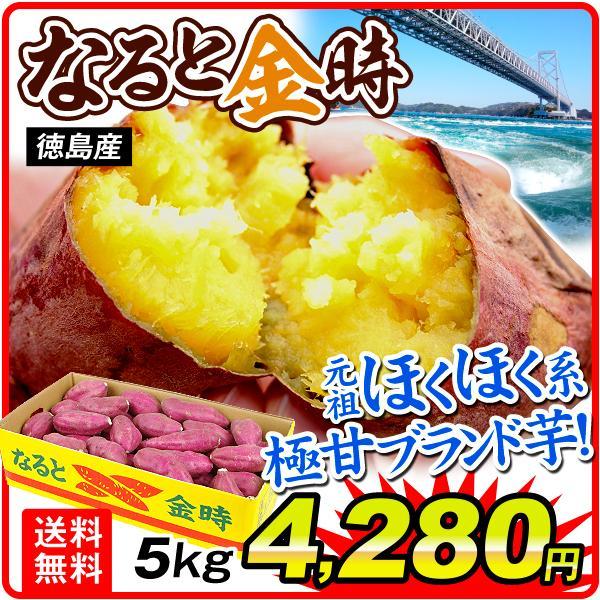 さつまいも 徳島産 お買得 なると金時 5kg 1箱 送料無料 食品 国華園