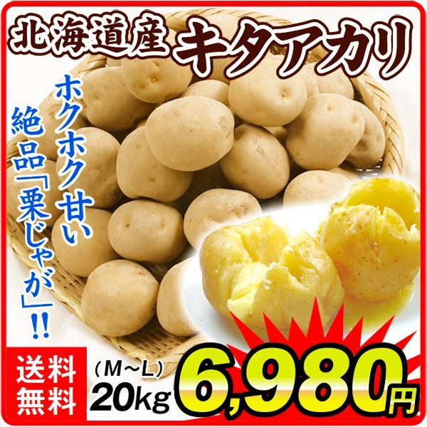 じゃがいも 北海道産 キタアカリ 20kg 1組 送料無料 食品 国華園