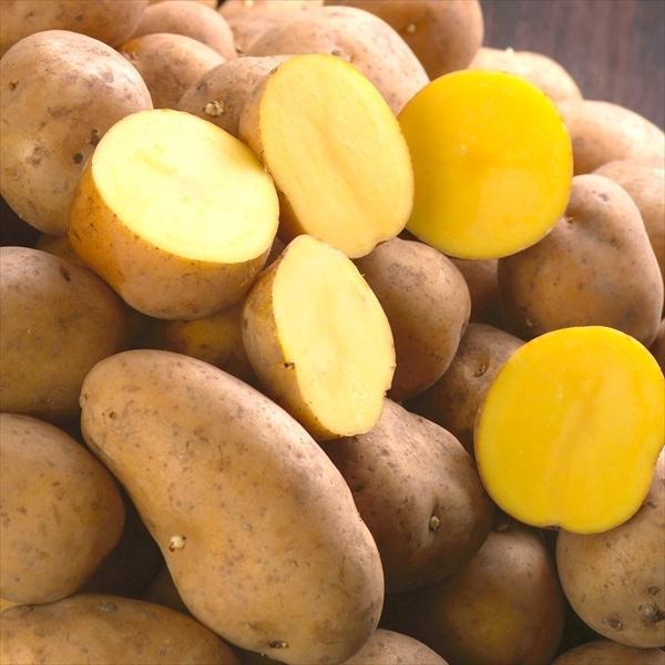 じゃがいも 北海道産 インカのめざめ 10kg 送料無料 食品