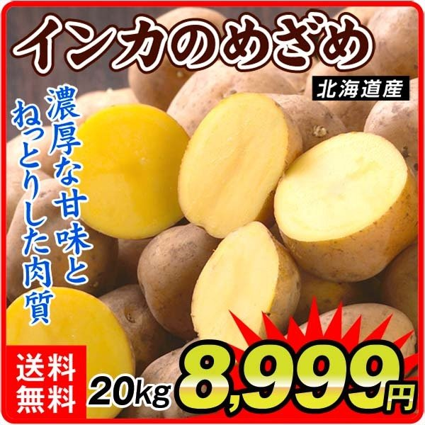 じゃがいも 北海道産 インカのめざめ 20kg (10kg×2箱) 送料無料 食品