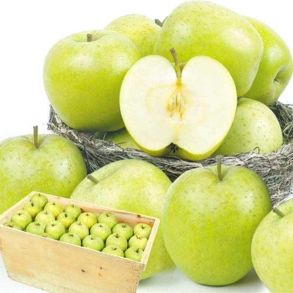 りんご 青森産 ご家庭用 王林 木箱 約20kg 1箱 送料無料 食品 国華園