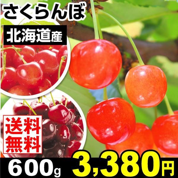 さくらんぼ 北海道産 さくらんぼ 600g ご家庭用 品種おまかせ さくらんぼ 冷蔵便 サクランボ 食品 国華園|kokkaen