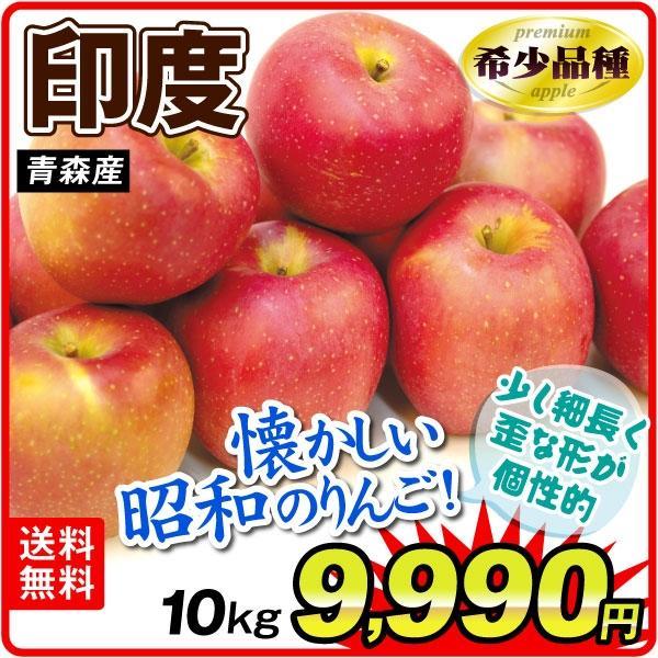 りんご 青森産 印度 10kg 1箱 送料無料 食品 国華園