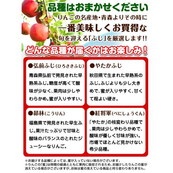 りんご お買得 青森産 早生ふじ(10kg)徳用 ご家庭用 数量限定 フルーツ 果物 林檎 国華園|kokkaen|05