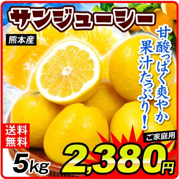 柑橘 熊本産 ご家庭用 サンジューシー 5kg 送料無料 食品