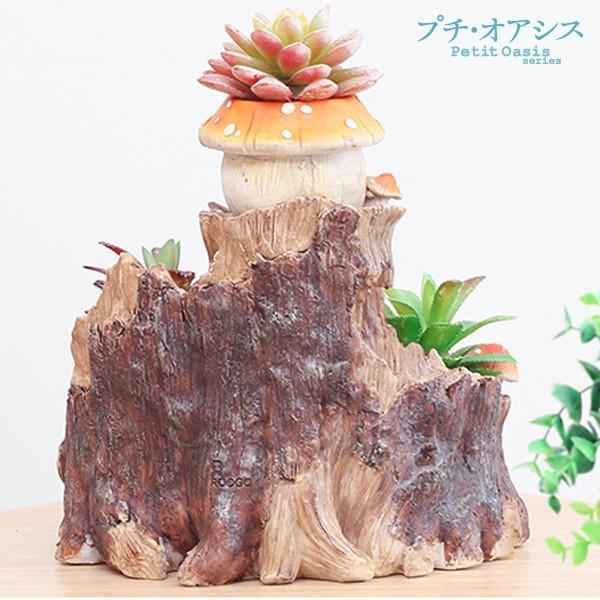 鉢 植木鉢 ポリ製 多肉植物 寄せ植え かわいい プチオアシス・キノコのおうち 1個 女性 プレゼント 国華園|kokkaen|04