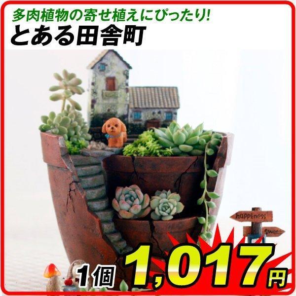 鉢 植木鉢 ポリ製 多肉植物 寄せ植え かわいい プチオアシス・とある田舎町 1個 女性 プレゼント|kokkaen
