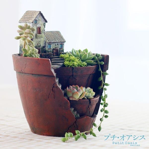 鉢 植木鉢 ポリ製 多肉植物 寄せ植え かわいい プチオアシス・とある田舎町 1個 女性 プレゼント|kokkaen|03