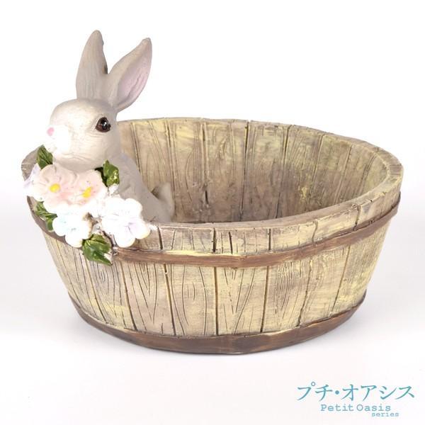 鉢 植木鉢 ポリ製 多肉植物 寄せ植え かわいい プチオアシス・ウサギのお庭 1個 女性 プレゼント 国華園|kokkaen|04