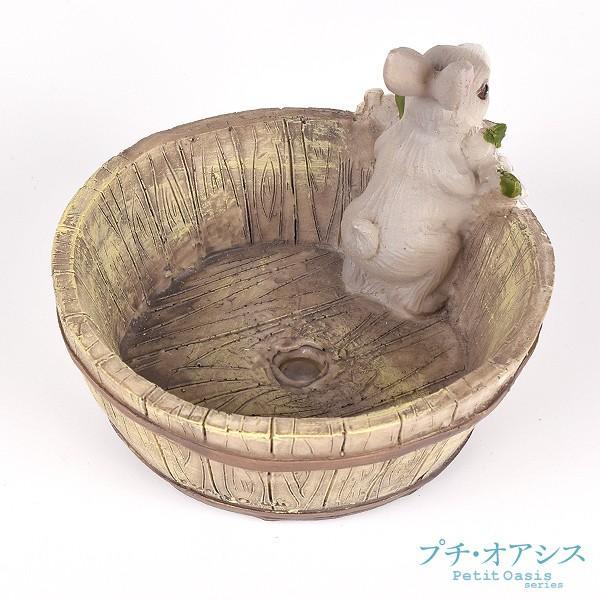 鉢 植木鉢 ポリ製 多肉植物 寄せ植え かわいい プチオアシス・ウサギのお庭 1個 女性 プレゼント 国華園|kokkaen|05