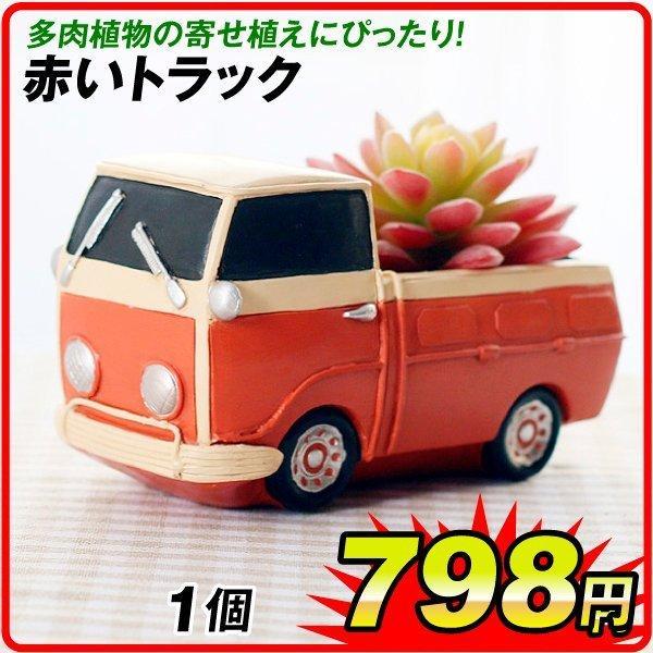 鉢 植木鉢 ポリ製 多肉植物 寄せ植え かわいい プチオアシス・赤いトラック 1個 女性 プレゼント 国華園|kokkaen