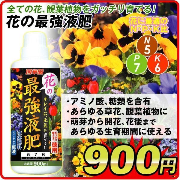 花の最強液肥