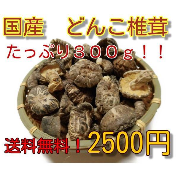 干し椎茸 国産 中玉どんこ椎茸 増量お買い得品  送料無料 干ししいたけ 干しシイタケ|kokusansiitake