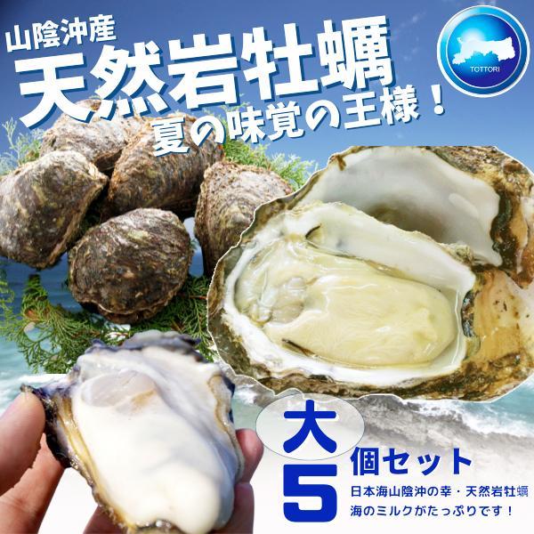 天然岩牡蠣 (活) 牡蠣 300g-400g前後 5個セット 鳥取産 岩牡蠣 カキ 刺身用 (岩ガキ/岩がき) 送料無料