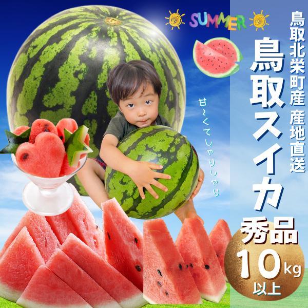 鳥取産 スイカ 鳥取県北栄町産(旧大栄町) 西瓜 すいか 超特大10-11キロ以上(10−11kg以上ご贈答用 秀品) 送料無料