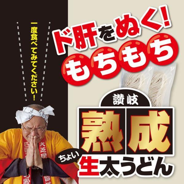 激ウマ 熟成 ちょい 生太 讃岐 うどん ドーンと 6食 便利な個包装 300g×2袋 600g 送料無料 最安値 挑戦 komatuyamenbox 16