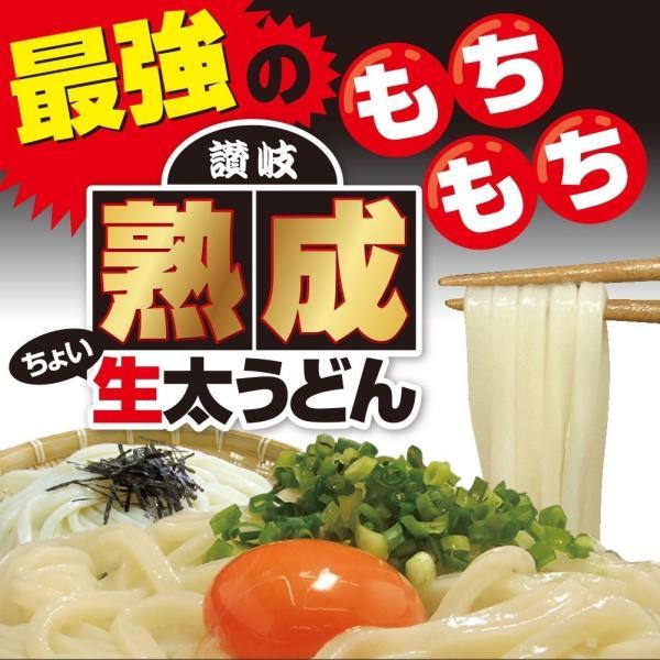 激ウマ 熟成 ちょい 生太 讃岐 うどん ドーンと 6食 便利な個包装 300g×2袋 600g 送料無料 最安値 挑戦 komatuyamenbox 04
