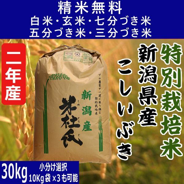 令和2年 こしいぶき 新潟県産 特別栽培米 玄米30Kg 白米・7分づき・5分づき・3分づき・玄米・精米無料