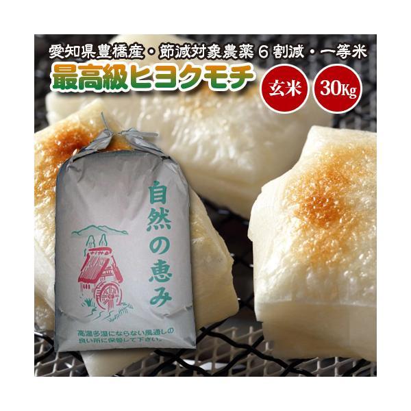 【令和2年度産・送料無料!(一部地域を除く)】 もち米・高級ヒヨクモチ 30kg 節減対象農薬6割減・一等米・玄米