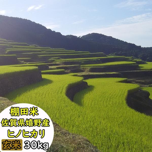 【玄米】【令和2年産】【送料無料】佐賀県嬉野産 棚田米 ヒノヒカリ 玄米30kg又精米27kg