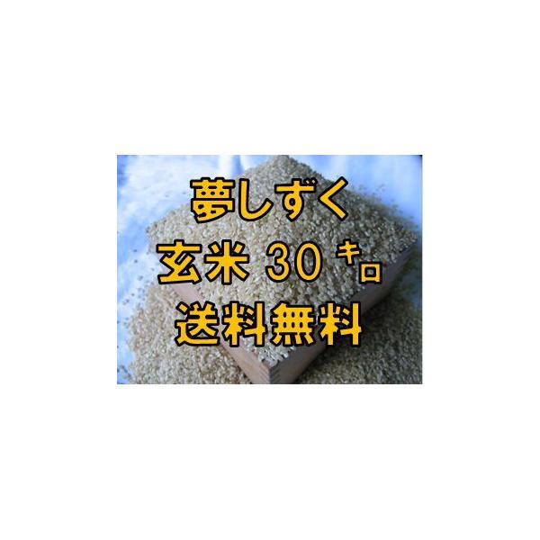 【令和2年産  新米 特A】夢しずく  玄米30kg  九州 佐賀県白石米 【送料無料】