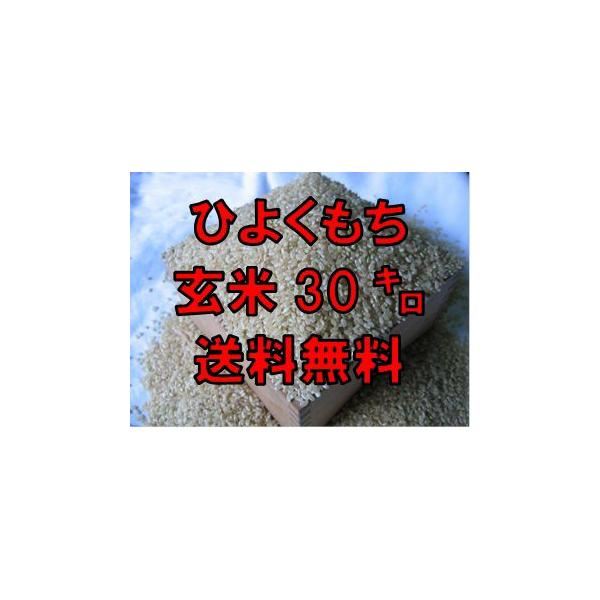 【令和2年産】佐賀県産 ヒヨクモチ 玄米30kg 送料無料 日本三大もち米処 佐賀より産地直送