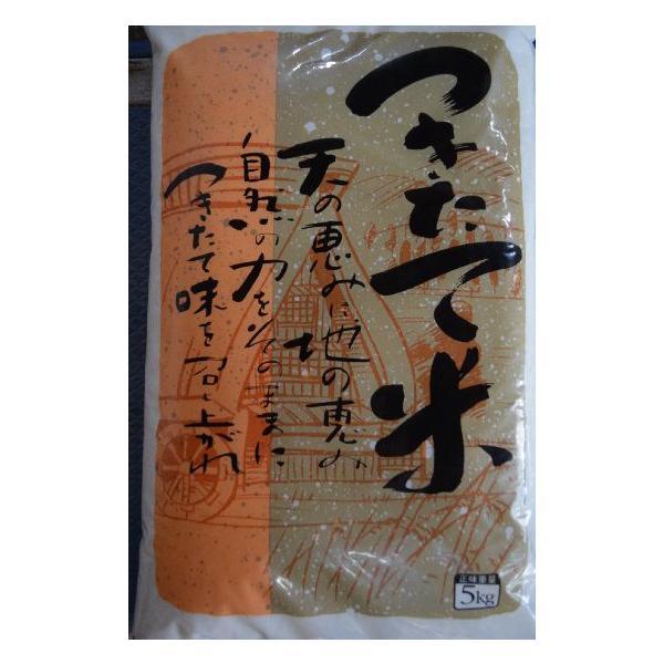 送料無料 訳あり激安 九州佐賀県産100%複数原料米 つきたて米 白米 30kg(10kg×3)
