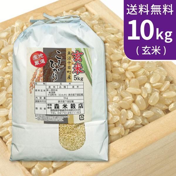 送料無料(北海道・九州・沖縄除く) 令和2年産 玄米 最高級!魚沼産コシヒカリ10kg