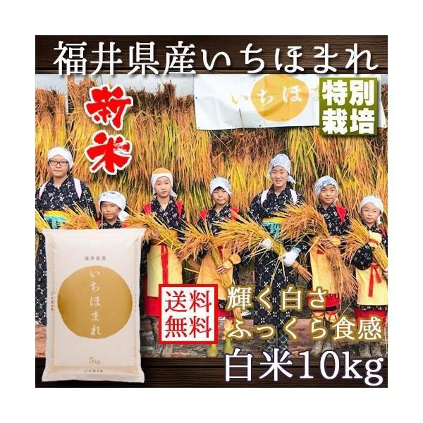 新米 いちほまれ 福井県産 令和3年産 10kg 特別栽培