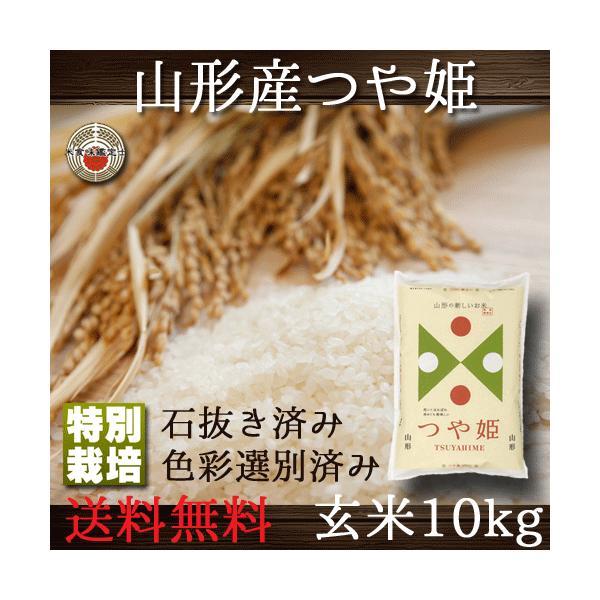 つや姫 山形県産 玄米 10kg 特別栽培 送料無料 (一部地域除く)