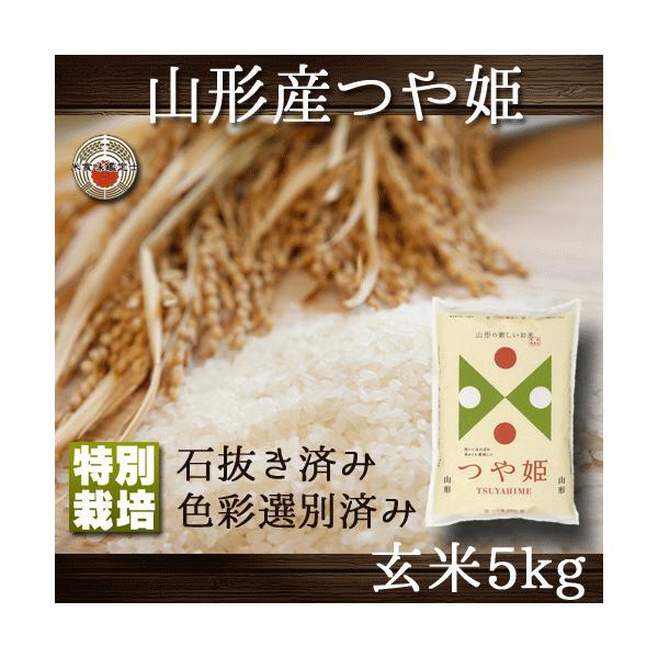 つや姫 山形県産 玄米 5kg 特別栽培 送料無料