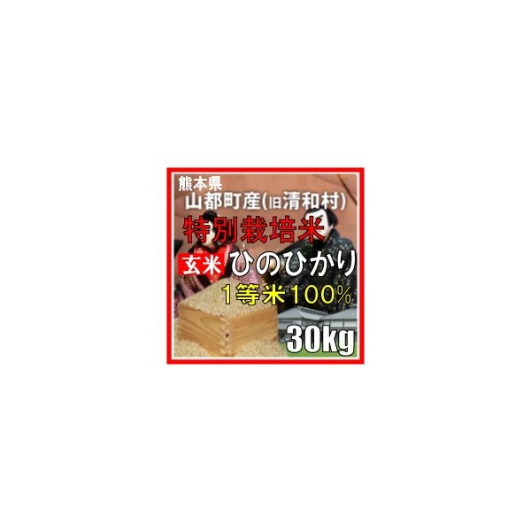令和2年産 玄米 熊本県山都町産 特別栽培米 ひのひかり 30kg