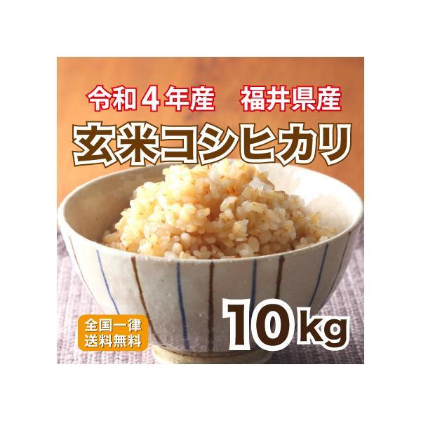玄米 令和2年産 福井県産コシヒカリ10割 栄養満点 10kg 安い お米 10kg×1 送料無料
