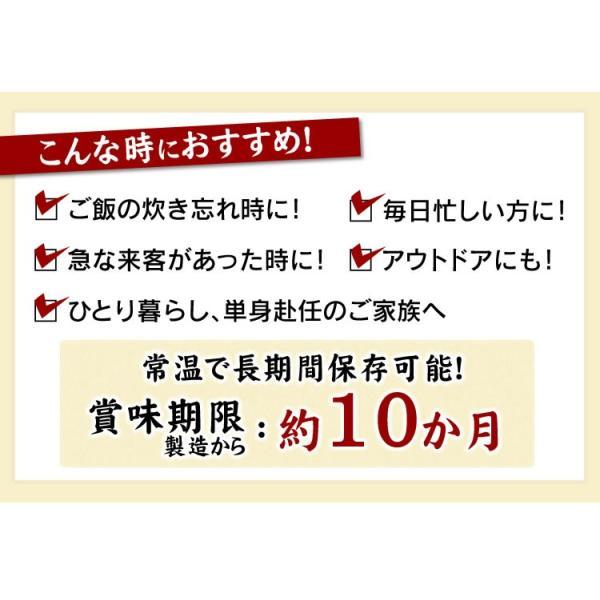 セール レトルトご飯 パックご飯 ごはん パック ごはんパック レンジ 180g 10食 セット 非常食 保存食|komenokura|16