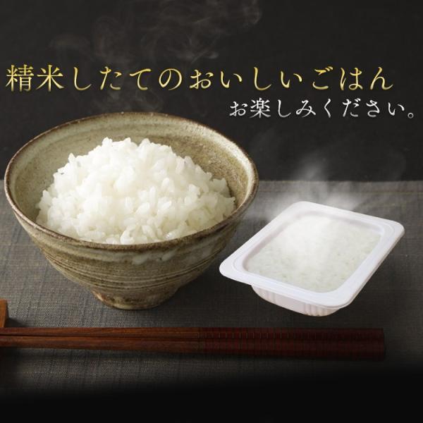 セール レトルトご飯 パックご飯 ごはん パック ごはんパック レンジ 180g 10食 セット 非常食 保存食|komenokura|10