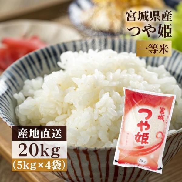 米 20kg つや姫 令和2年産 お米 送料無料 安い (5kg×4袋) 一等米 宮城県産 白米 うるち米 精白米 おいしい みやぎ つやひめ こめ 20キロ
