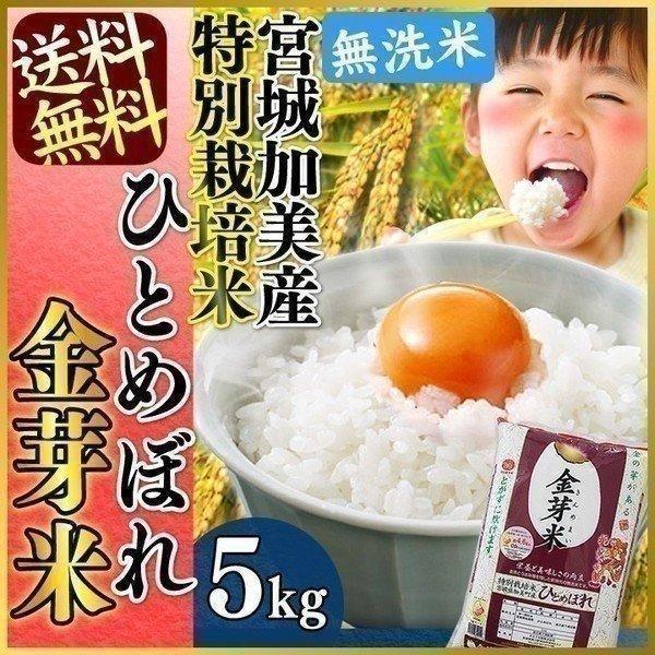 米 5kg ひとめぼれ お米 5キロ お米 送料無料 安い 金芽米 無洗米 5kg 特別栽培 宮城加美産 ごはん うるち米 精白米