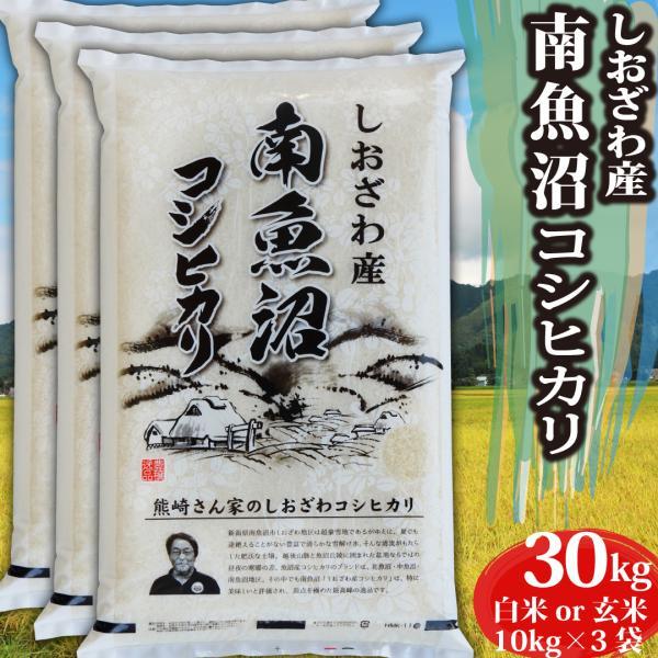 お米<送料無料>新潟県南魚沼しおざわ産コシヒカリ 玄米30kg 令和2年産米 精米無料