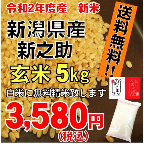 平成29年度 新潟県産 新之助玄米5kg