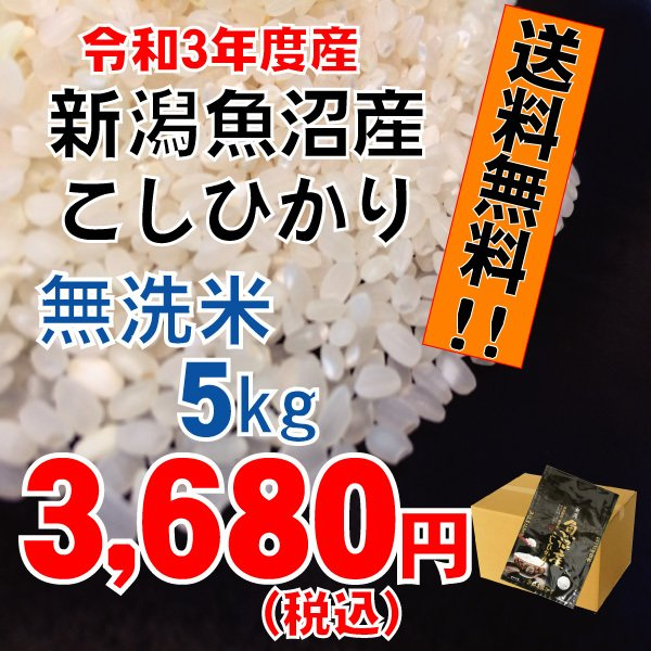 平成29年度 新潟県産 魚沼こしひかり無洗米5kg